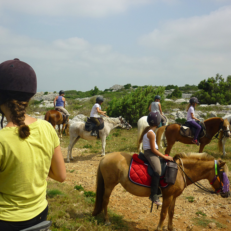 randonnée cheval narbonne